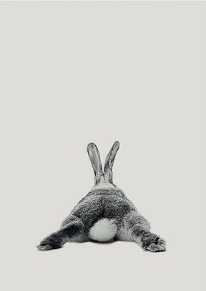 Rabbit Druck, Woodlands Kindergarten Kunst, Kaninchen-Wand-Dekor, schwarz und weiß-Baby-Animal-Print, druckbare schwarz-weiß Bunny, digitaler Download