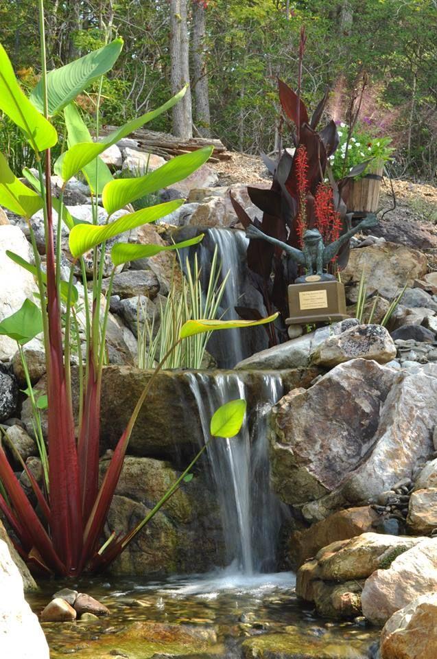 Waterfall created by Virginia Water Gardens in Fredericksburg, VA - cascadas en jardines