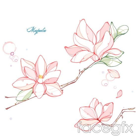 Magnolia Flower Line Drawing Vector Flower Line Drawings Flower Illustration Flower Drawing