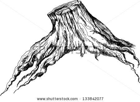 Pencil Drawing Of Tree Trunk Old Tree Stump - Sketch Stock Images ...