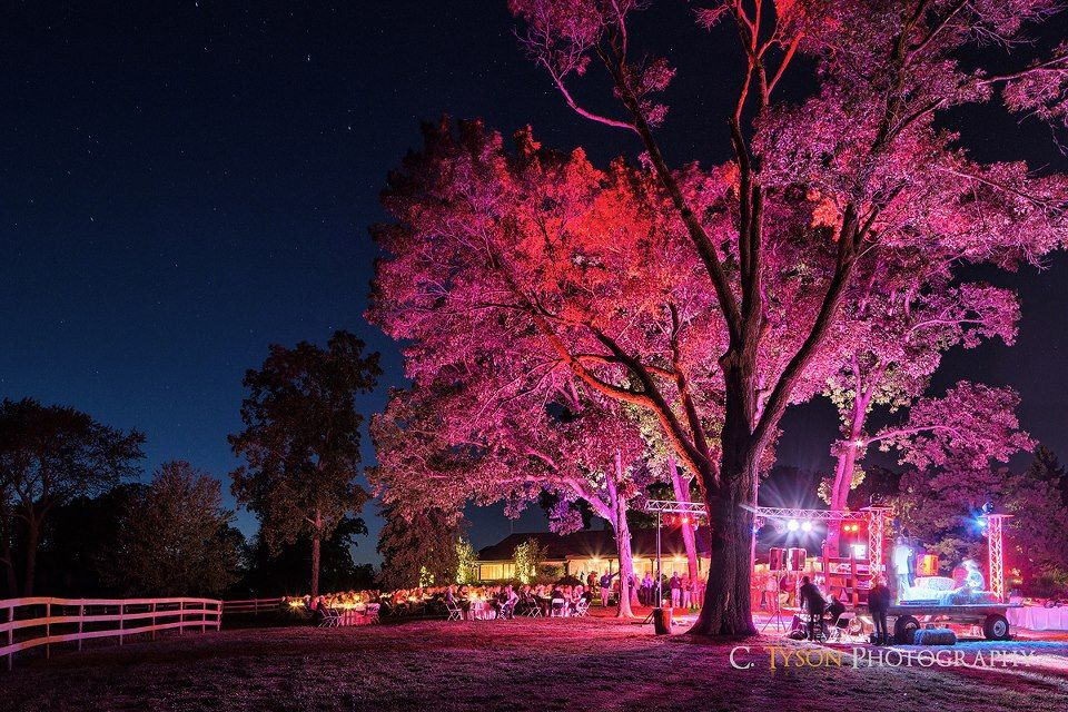 We did this outdoor uplighting at an event over the summer for Exterior uplighting