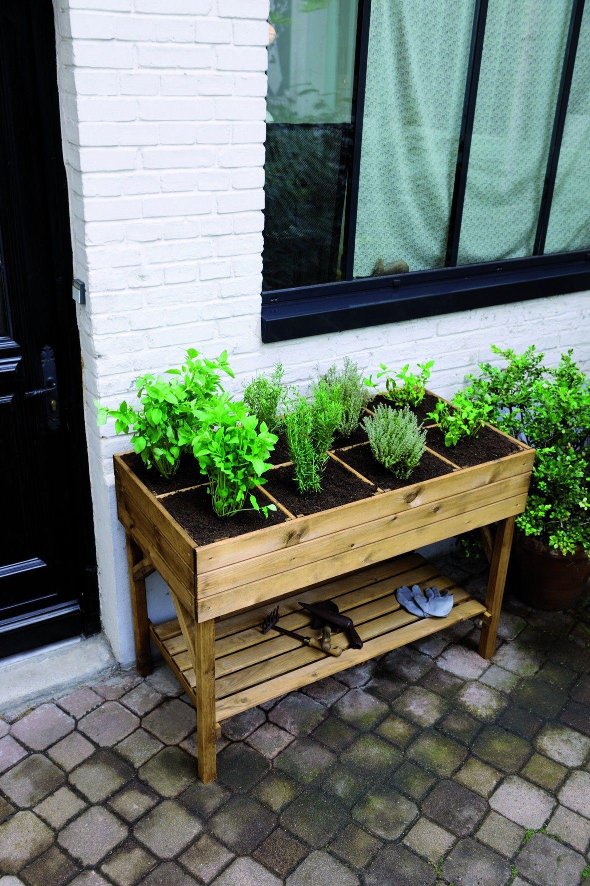 carr potager sur lev gariguette plants garden. Black Bedroom Furniture Sets. Home Design Ideas