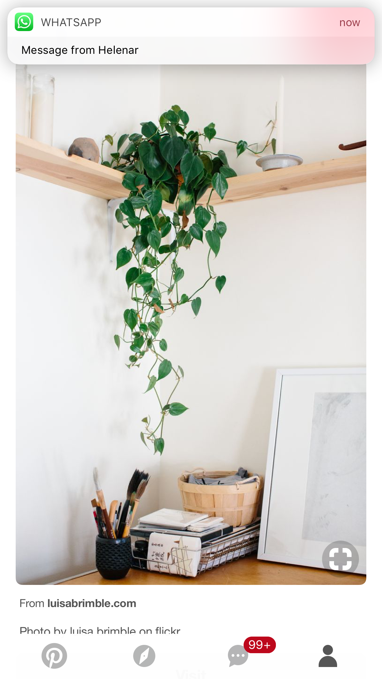 Plant Shelving Indoor Corner Shelf House Plants House Plants Pinterest