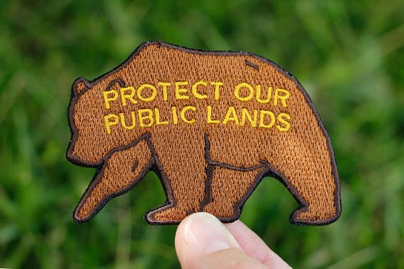 Protect Our Public Lands Grizzly Bear Patch 3 Iron-On Patch