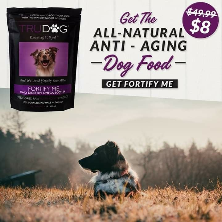 All Natural Pet Products Anti Aging Vet Approved That S