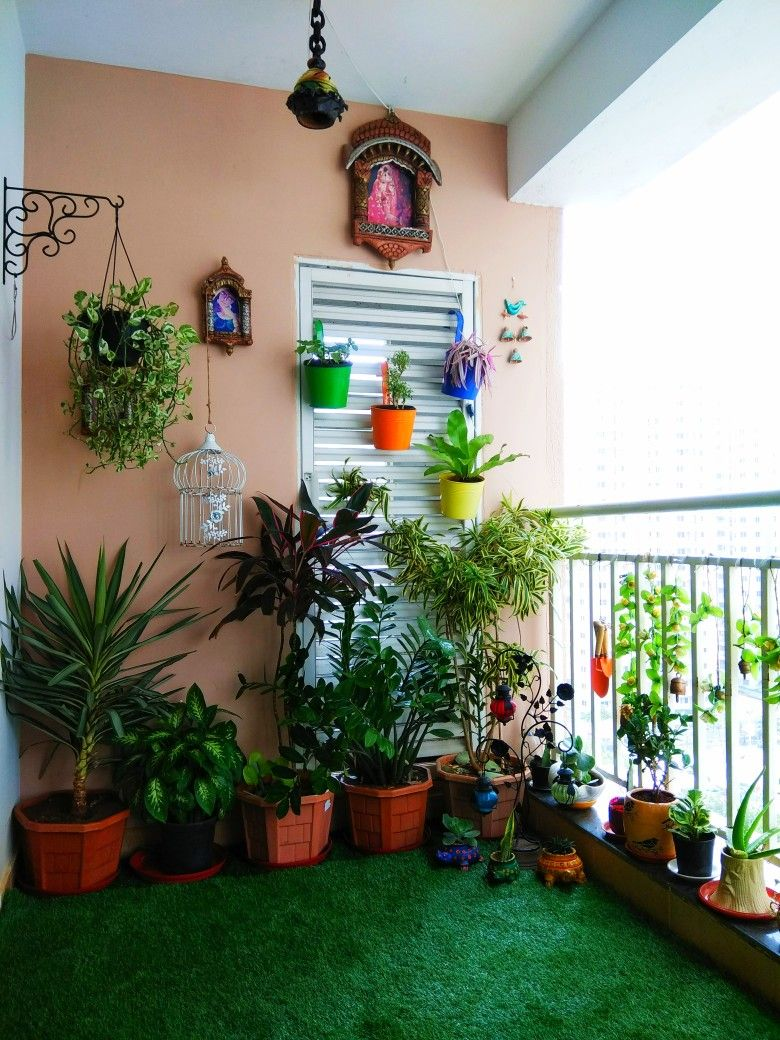 Balcony Plants Apartment Garden Small Decorating