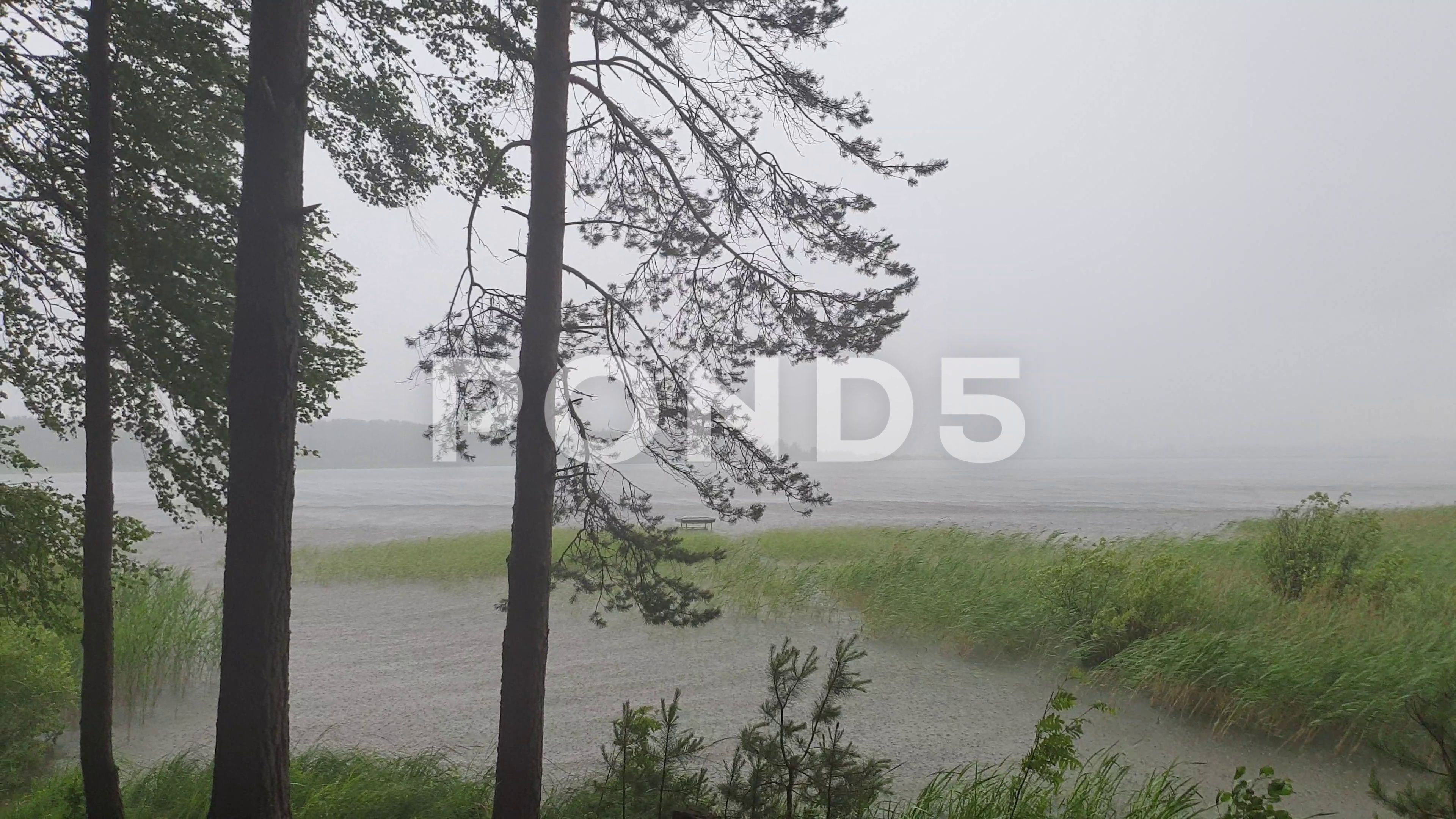 Storm On The River Waves In A Storm Hurricane On The River Stock Footage Ad Waves River Storm Storm In 2020 Storm Waves River