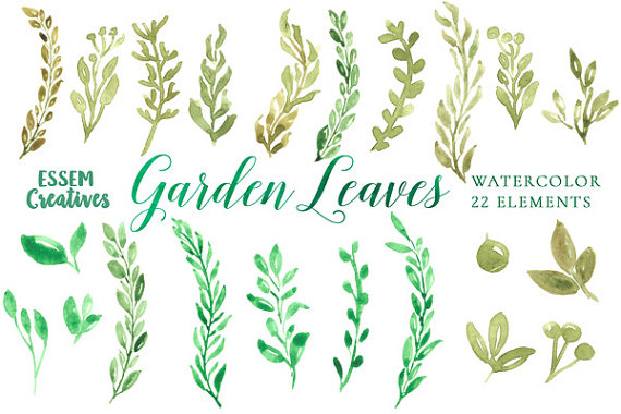 Watercolor Leaves Clipart Green Watercolor Elements Garden
