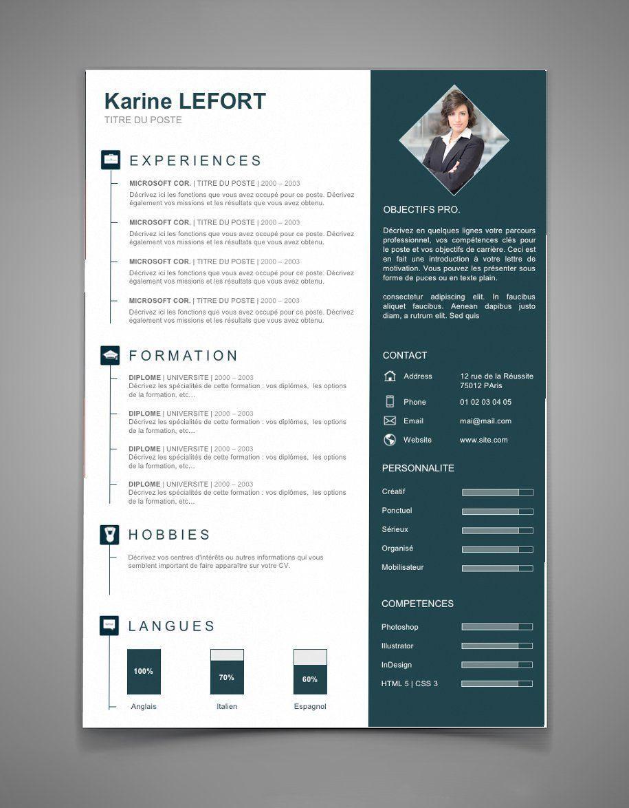 Presentation Cv 67 Maxi Cv Resume Skills List Resume Skills Resume Design Template