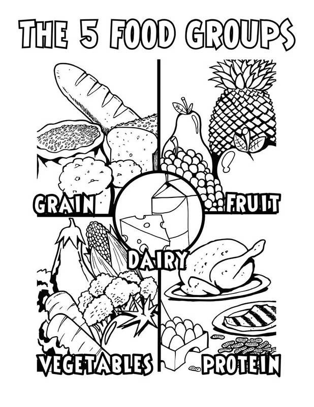 phytonutrients coloring sheet - Google Search | March | Pinterest ...