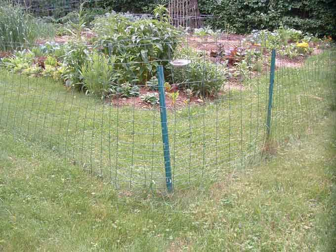 17 Best 1000 images about fences on Pinterest Gardens Cheap fence
