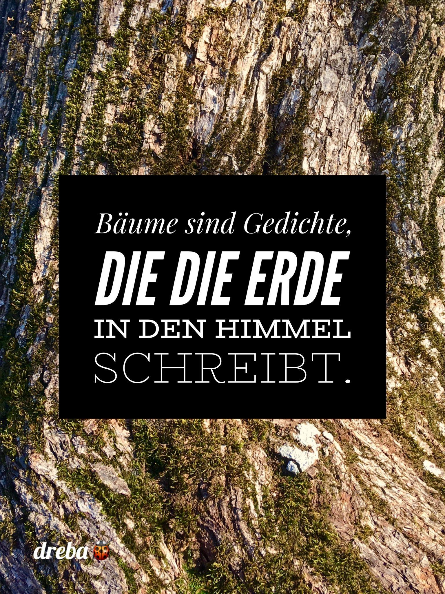 Bäume Sind Gedichte Gestaltete Wünsche Zitate
