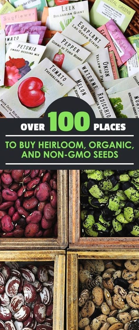 Over 100 Places to Buy Heirloom, Organic, and Non-GMO Seeds#buy #heirloom #nongmo #organic #places #seeds