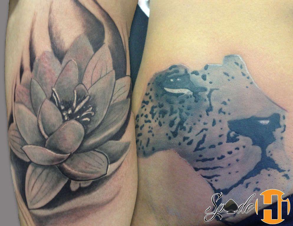 Lion in africa tattoo lotus flower lion africa african floral lion in africa tattoo lotus flower lion africa mightylinksfo