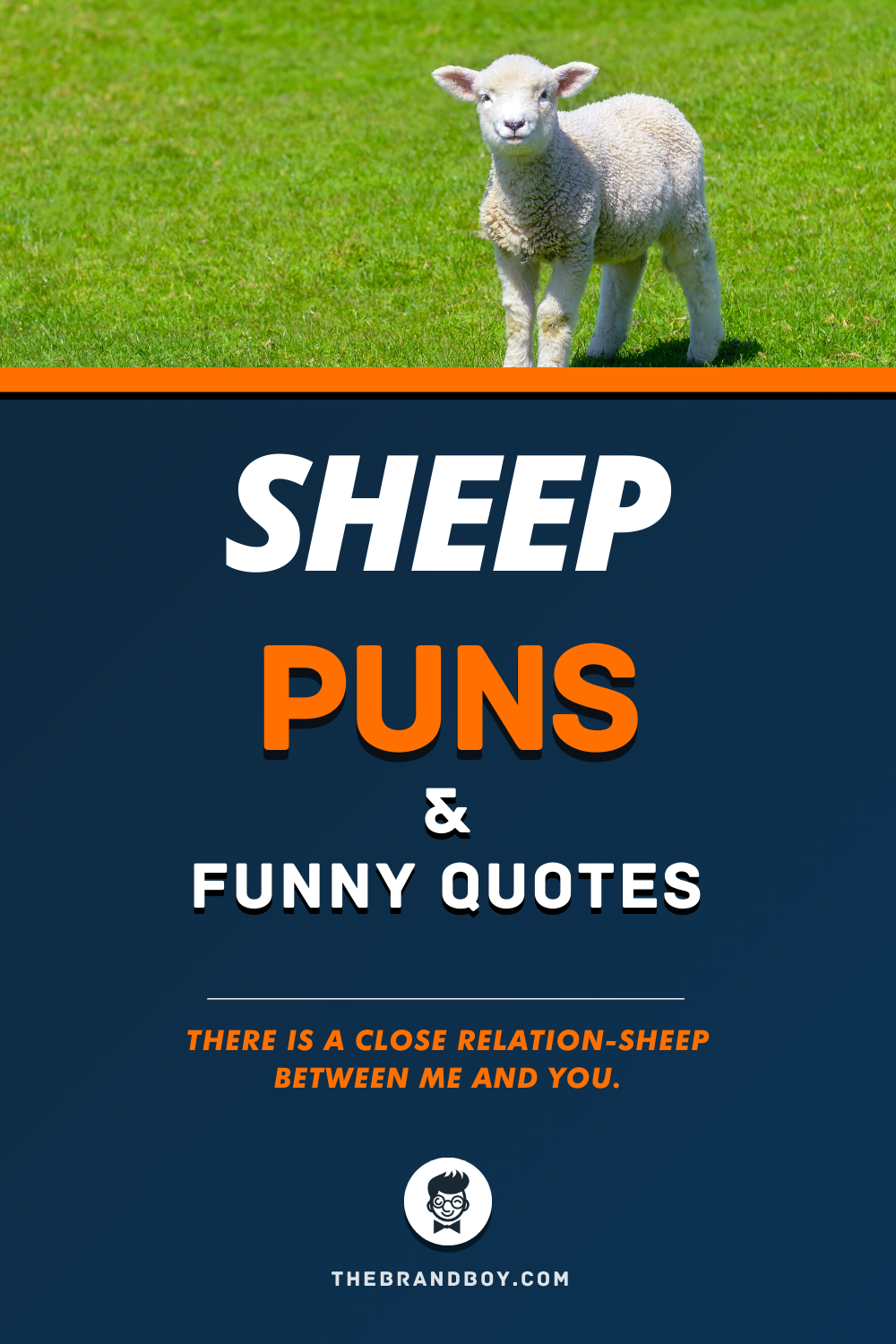 55 Best Sheep Puns Thebrandboy Com In 2020 Sheep Puns Puns Funny Puns