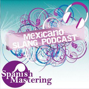"""Mexicano Slang Podcast » Blog Archive » Episodio 10: Expresión """"Hacerse el pato"""""""