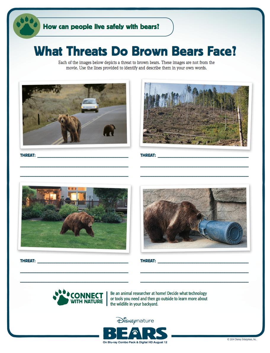 Animal Adaptations | Human Threats to Biodiversity | Endangered ...