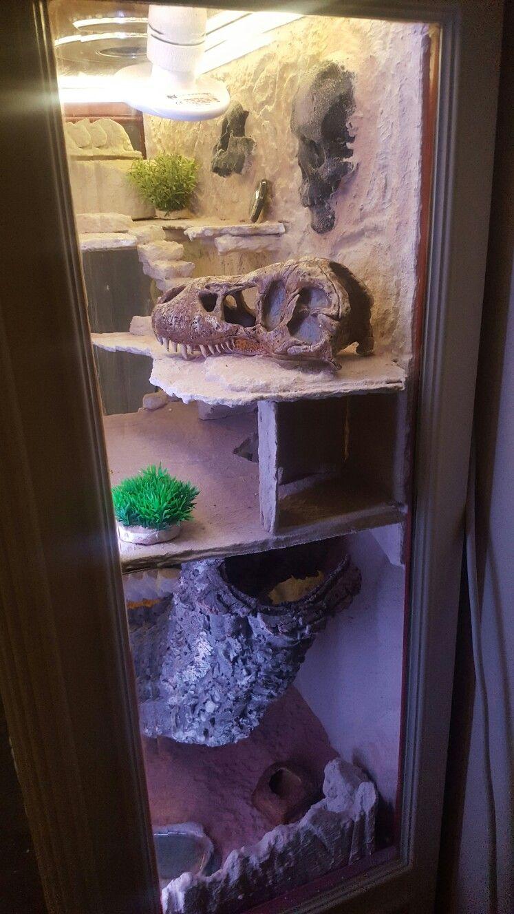 Pin by robby van den berg on custom made leopard gecko terrarium