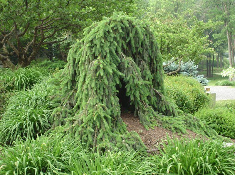 Details Zu Gartenwand Sichtschutz Wand Diptychon Baum Stahl