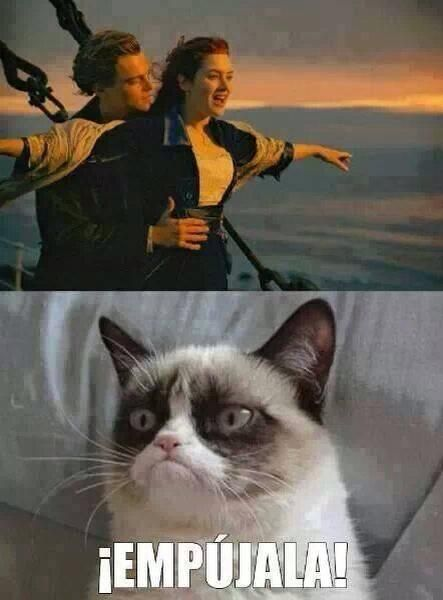 Borrachos 2 Meme Borrachos Memes Graciosos De Animales Amigos Borrachos
