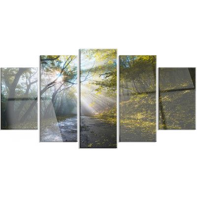 DesignArt 'Road in Autumn Forest at Sunset' 5 Piece Photographic Print on Canvas Set