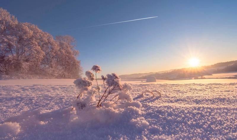 Skedsmo i Akershus - Photo: Johnny Tolk