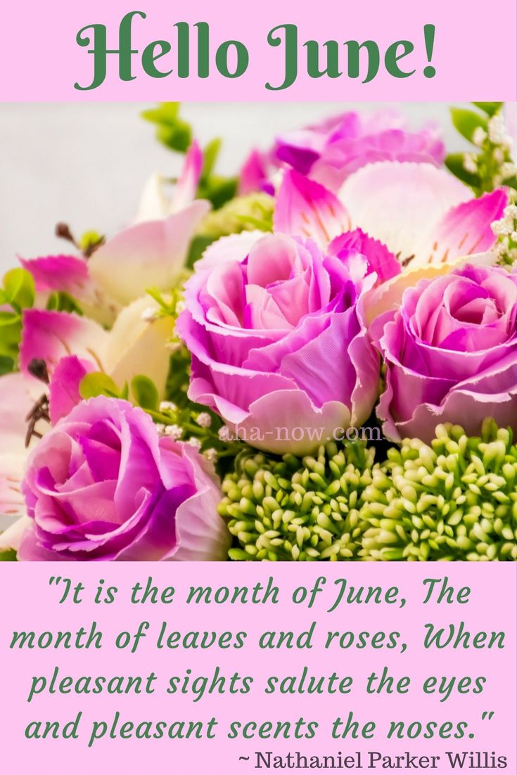 it is the month of june the month of leaves and roses when