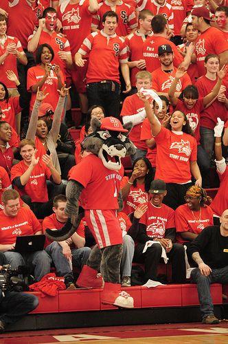Wolfie Stony Brook University Stony Brook College Sports