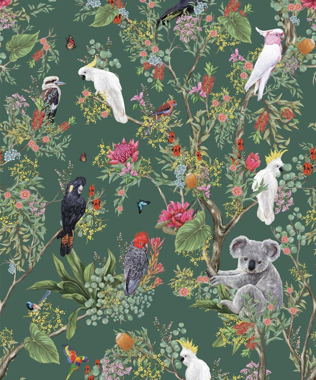 Australia Wallpaper • Koalas and Cockatoos • Milton & King
