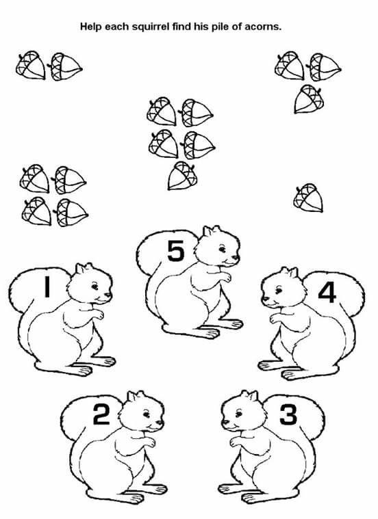 Squirrel Acorn Preschool Matching Worksheet on Squirrels Squirrel Worksheets For Kindergarten