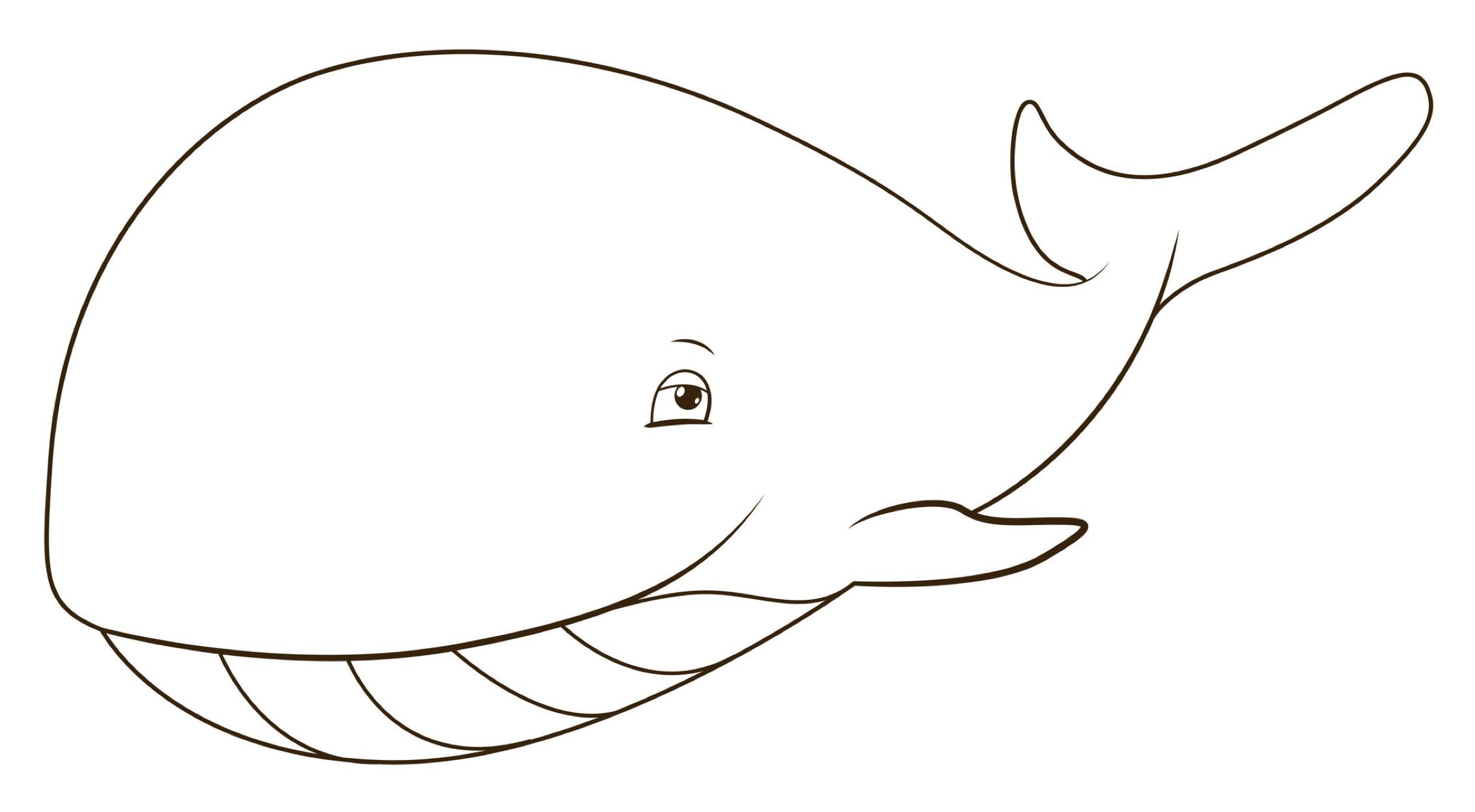 knutselen de kleine walvis nationale voorleesdagen de