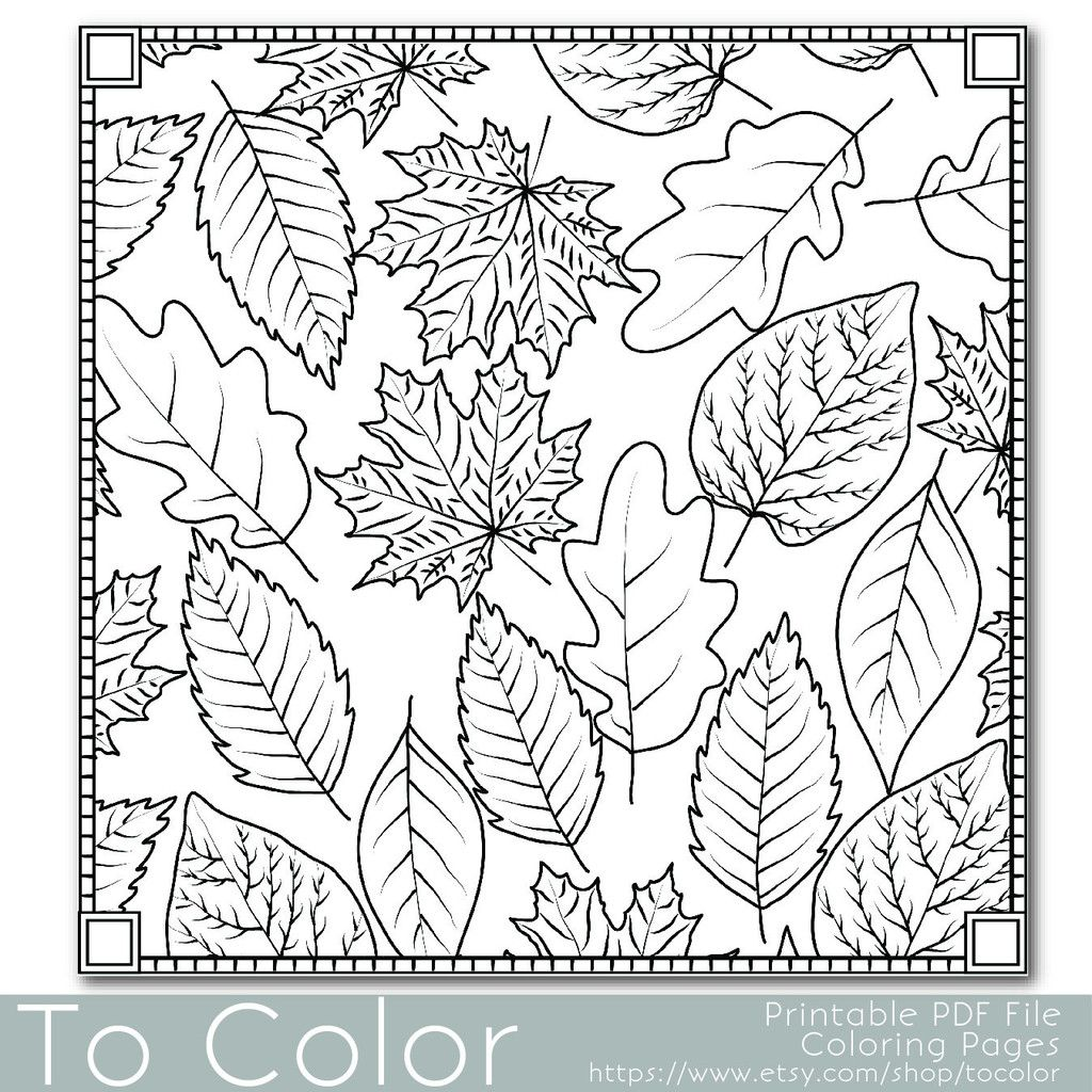 Autumn Leaves Coloring Page For Grown Ups Instant Download Fall Themed Coloring Fall Leaves Coloring Pages Coloring Pages For Grown Ups Fall Coloring Pages