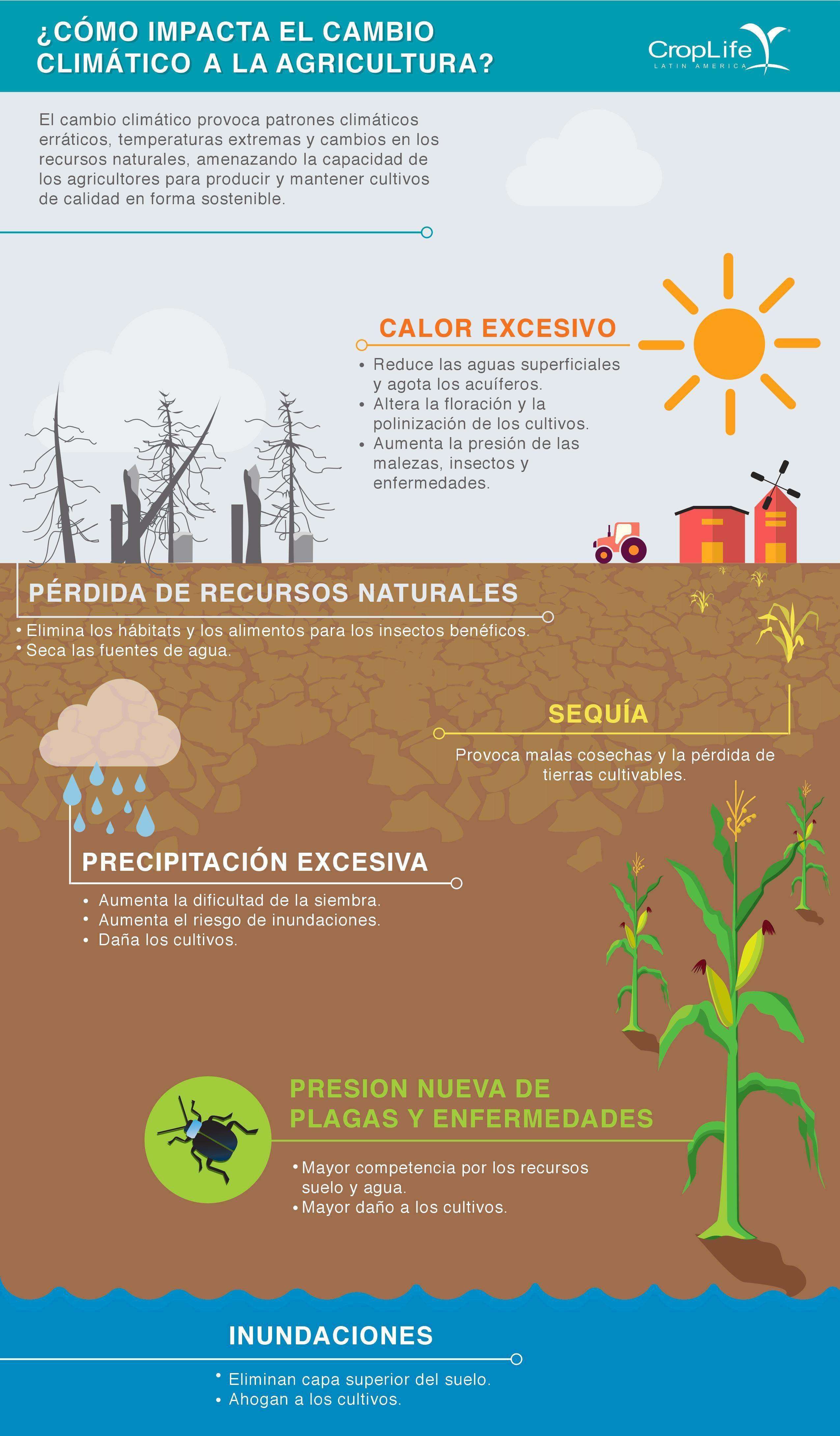 Los suelos ayudan a batir y adaptarse al cambio climático canvi climatic Pinterest