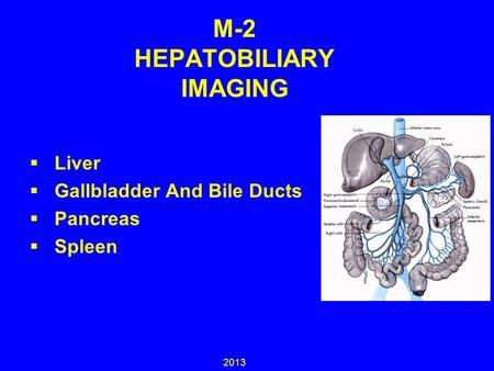 M 2 Hepatobiliary Imaging Bile Duct Pancreas Superior