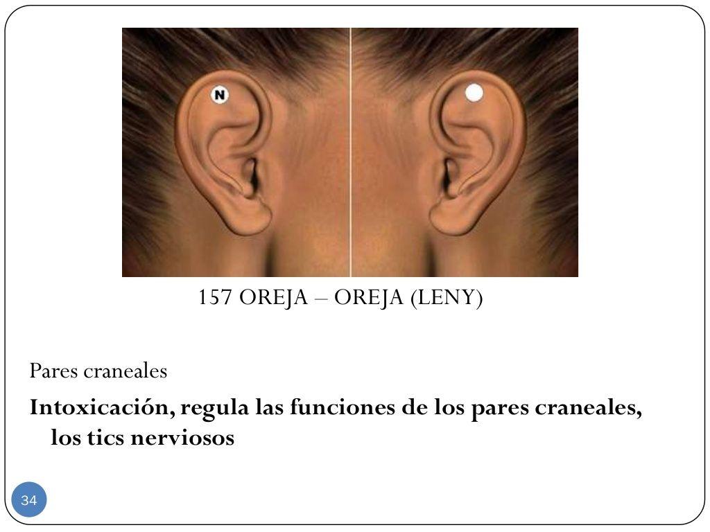 157 Oreja Oreja Leny Pares Craneales Intoxicación Regula Las Funciones De Los Pares Craneales Los Tics Nerviosos 34 Magnetismo