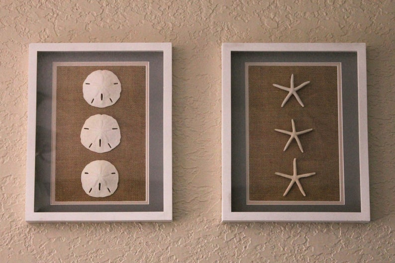Sand Dollar And Starfish 11x14 Shadowbox Frame Set Etsy In 2020 Sand Dollar Art Starfish Art White Shadow Box