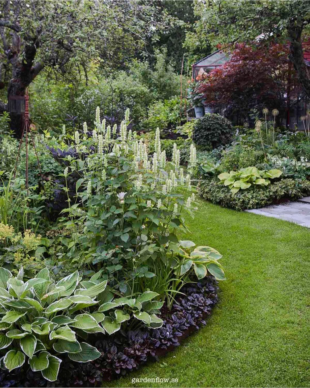 Garden landscape trees  Pin by Brinda Mojgani on kitchen gardening  Pinterest  Korean