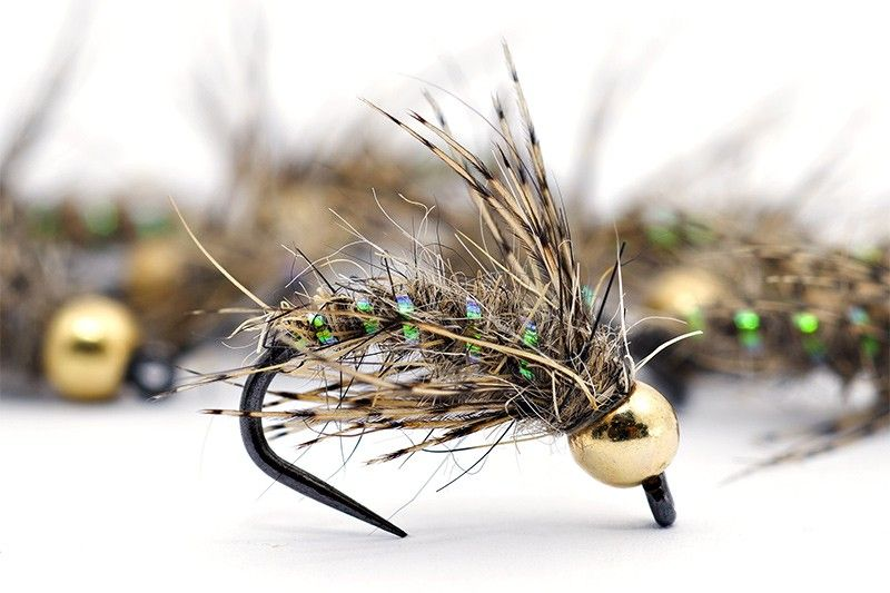 Choice of sizes 6 x Golden Quill Trout Flies Fishing Flies Tungsten Nymphs
