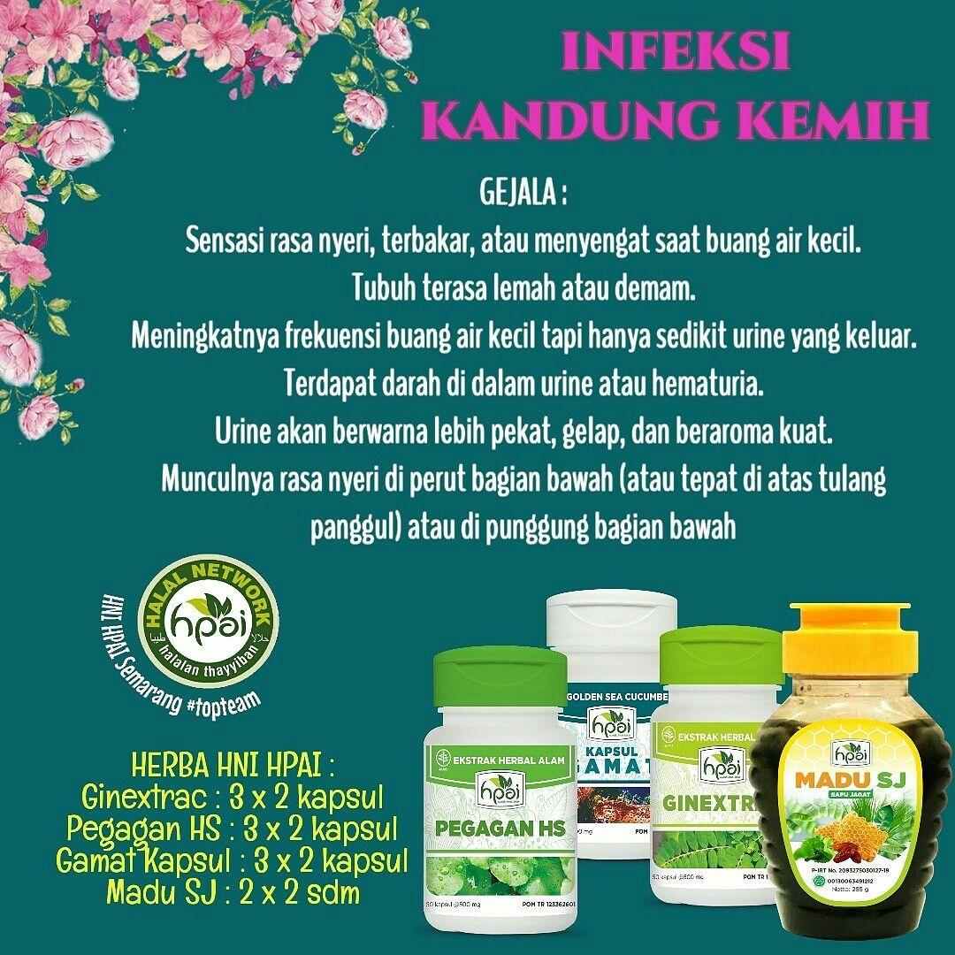 Resep Hni Hpai Infeksi Kandung Kemih Obat Alami Resep Herba