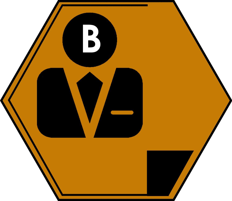 Career Essentials Badge Bronze Student activities