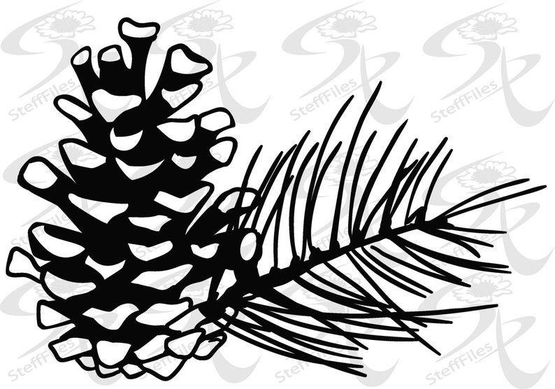 Vector Pine Conesaisvgdxf Png Eps Jpg Etsy Flower Svg Christmas Watercolor Art Gift