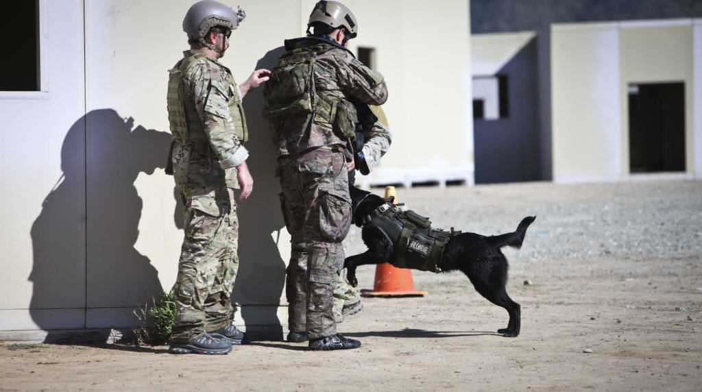 A Multi-Purpose Canine (MPC) handler with U.S. Army Special Forces, gives…