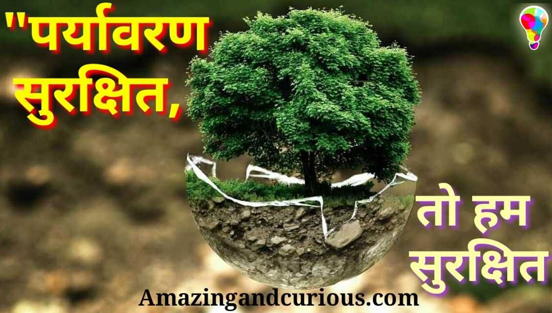 Best Environment Safety Slogan In Hindi With Pictures