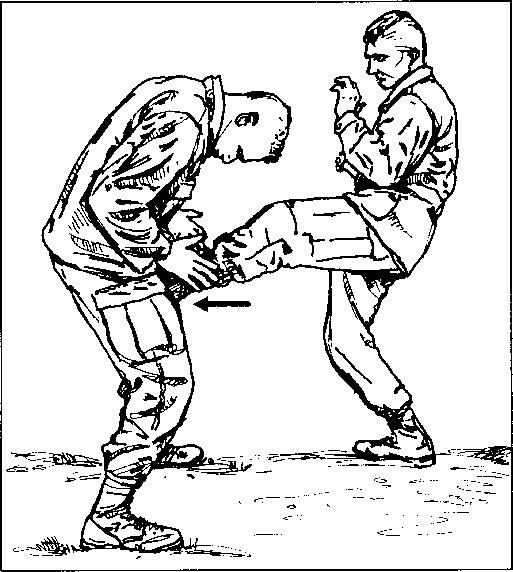 Figure 5-4  Heel kick to groin, | philippines martial arts