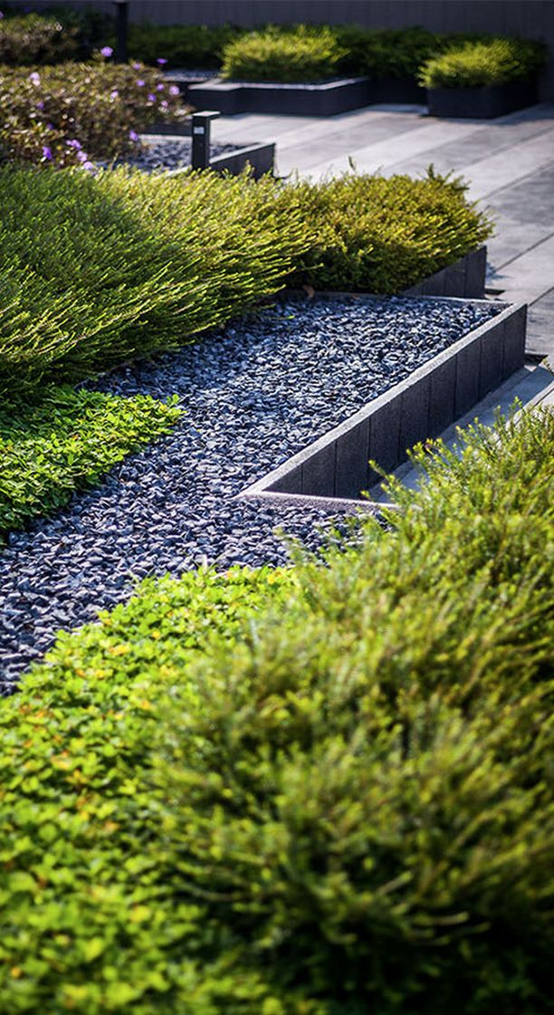 Sari by Sansiri, Landscape by Shma Company Limited Photos courtesy - Garden Design Company