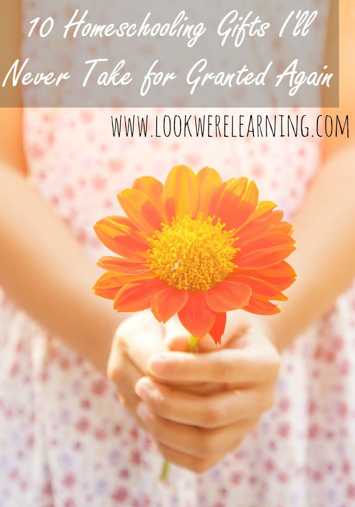 """10 Homeschooling Gifts I'll Never Take for Granted Again - A reminder to enjoy the """"simple"""" parts of homeschooling from www.lookwerelearning.com"""