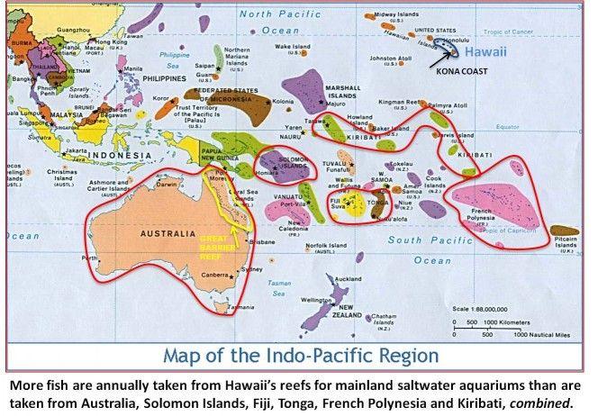hawaii comparison islands - Αναζήτηση Google   Places to Visit ...