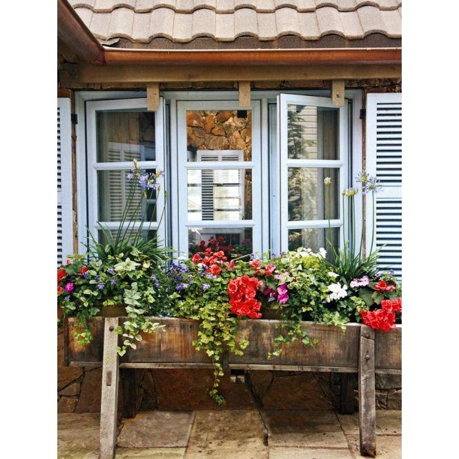 fachadas de casas populares flores - Pesquisa Google