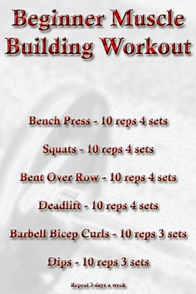 Beginner 3day Muscle Building Workout Routine