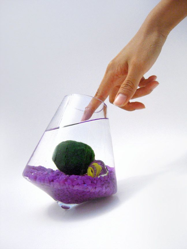 Marimo in the Rocking Playground